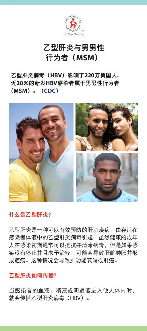 Hepatitis B At-a-Glance Men Who Have Sex with Men MSM (Chinese)
