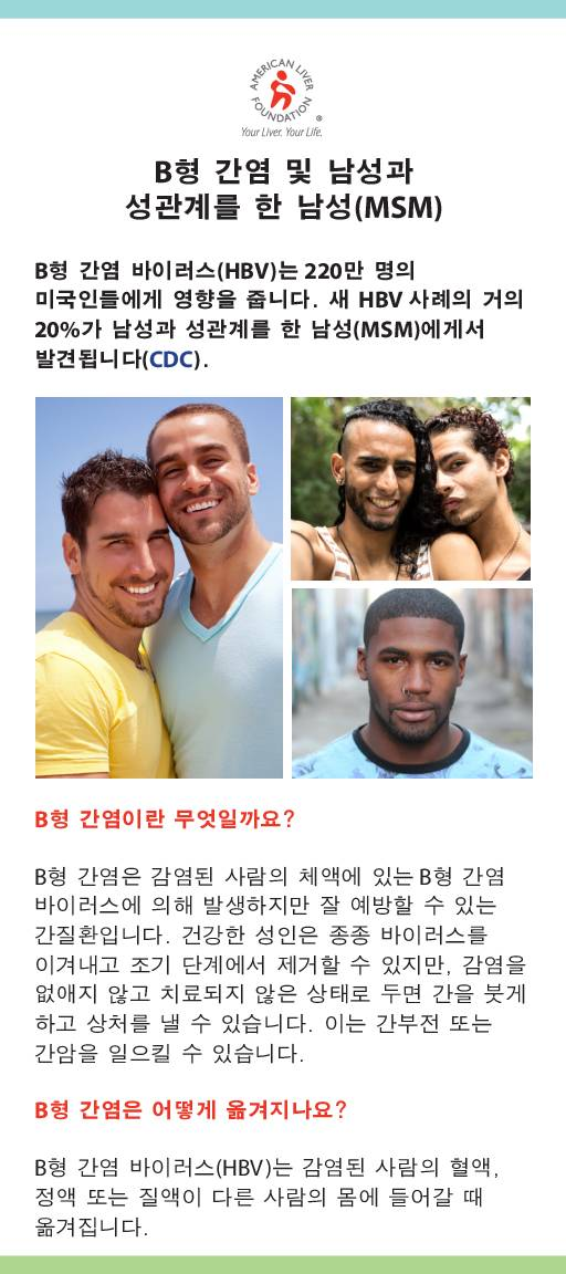 Hepatitis B At-a-Glance Men Who Have Sex with Men MSM (Korean)