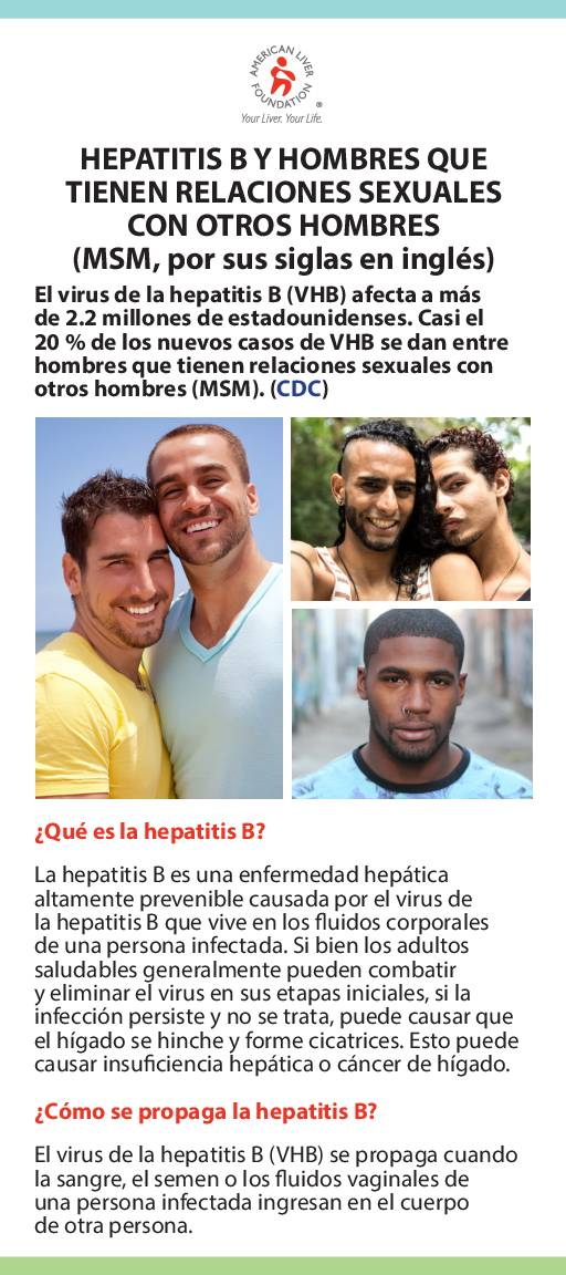 Hepatitis B At-a-Glance Men Who Have Sex with Men MSM (Spanish)