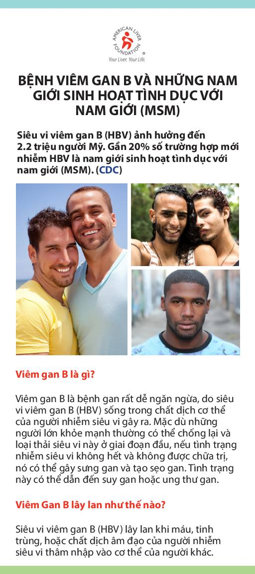 Hepatitis B At-a-Glance Men Who Have Sex with Men MSM (Vietnamese)